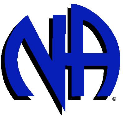 Narcotics Anonymous 12 Steps Program
